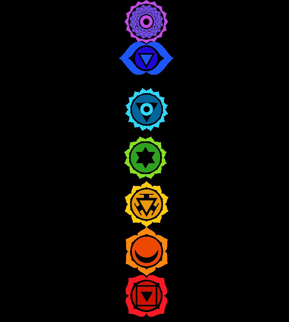 Főerőcsokrok az emberi szerkezetben